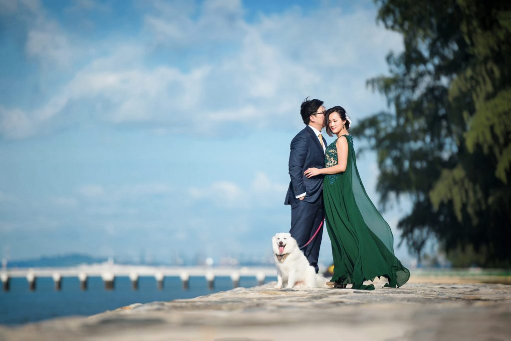 Pre-wedding shots alongside your pets