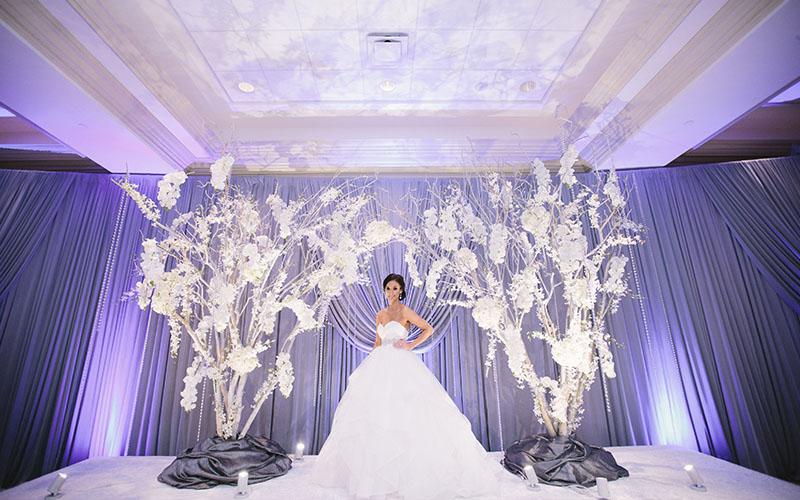 live performance ideas in Wedding  reception