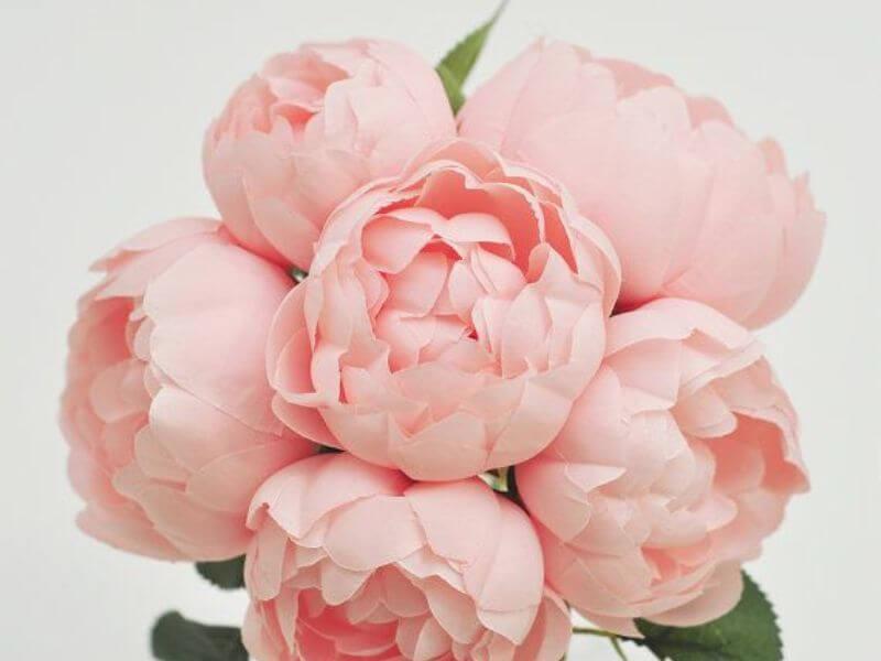 Wedding Flower Lush Pink Peonies